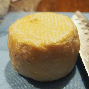 Je suis en plein pays du #CrottindeChavignol ! #chevre #fromage #fromagedechevre #Berry