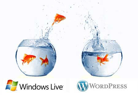 windows-live-space-to-wordpress
